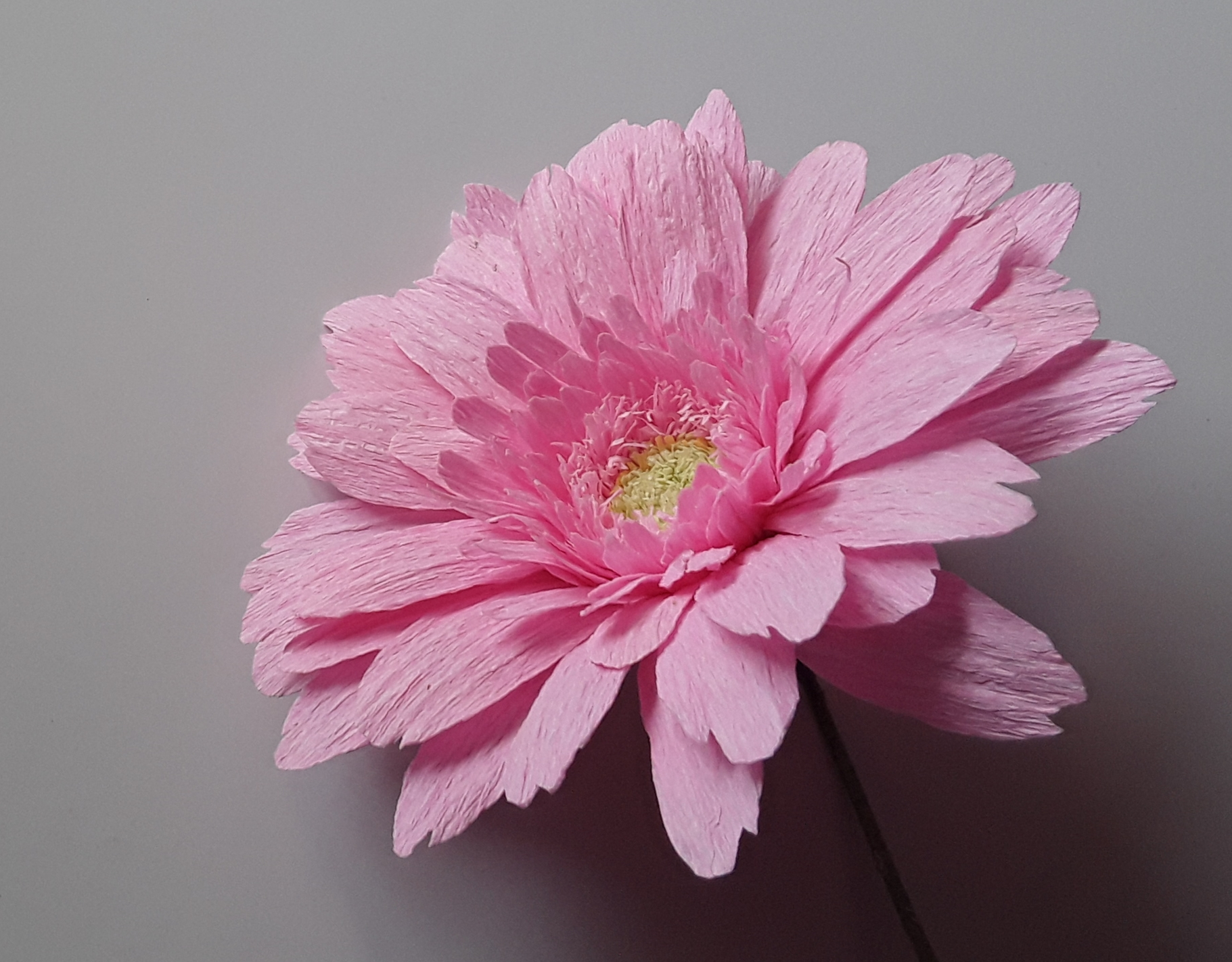 Paper Flower Making for Beginners by Ifeoma Benedict - crafts in London