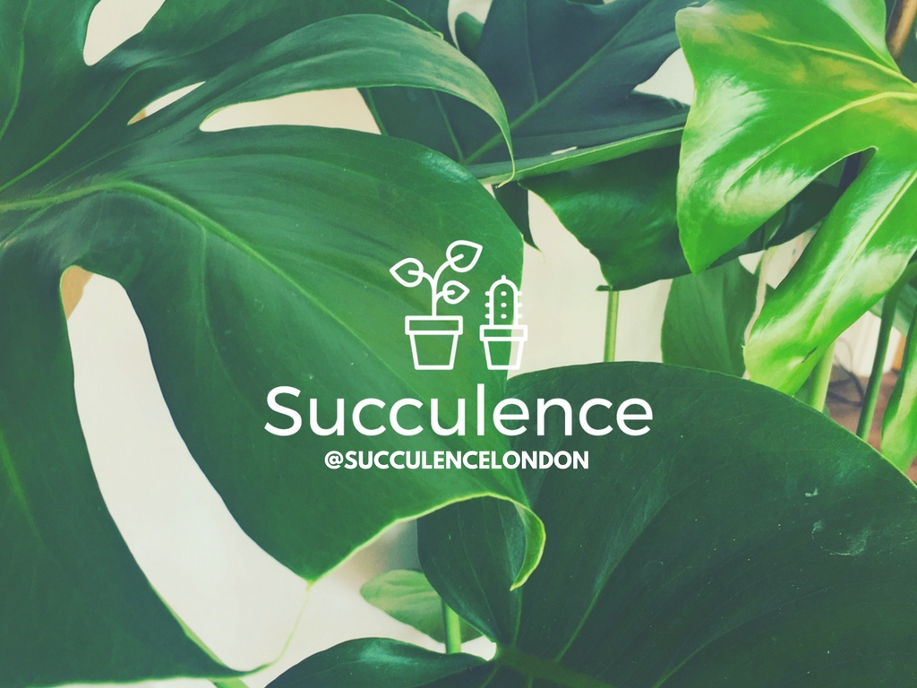 Succulence undefined classes in London