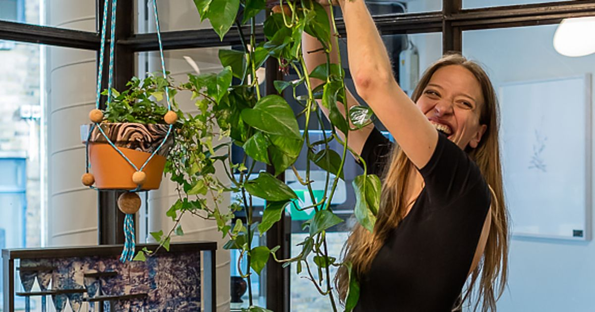 Make Your Own Adjustable Plant Hanger | Obby