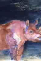 Watercolour Masterclass Series with Harriet Gillett