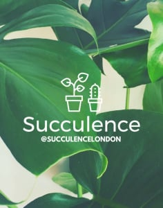Succulence crafts classes in London