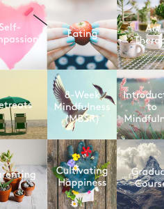 The Mindfulness Project mindfulness-and-wellbeing classes in London
