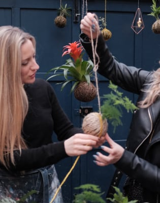 Kokedama Making (Create a Pot-less Hanging Plant) by Cutter Upper Studio - crafts in London