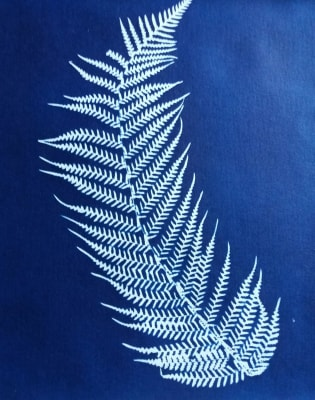 Botanical Blueprint: Cyanotype Printmaking Workshop by Magda Kuca Alternative Photography - art in London