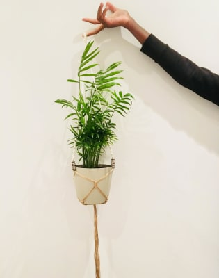 Make your own macramé plant hanger by M.Y.O (Make Your Own) - crafts in London
