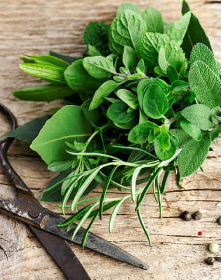 Make your own Hanging Herb Gardens by Something London - crafts in London