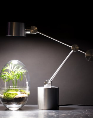 Terrarium Making at Tom Dixon  by Botanical Boys - crafts in London