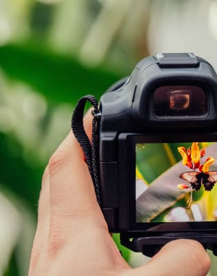 Intense Foundation of Digital Photography - Level 1 by Photography Course London - photography in London