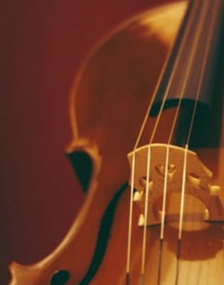 Beginners Violin Theory Lessons by Eleanor Harrison - music in London