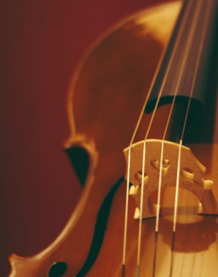 Advanced Violin Lessons by Jane Gillie - music in London