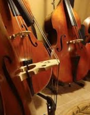 Double Bass Lessons for Any Level by Marie De Bry Arts Academy - music in London