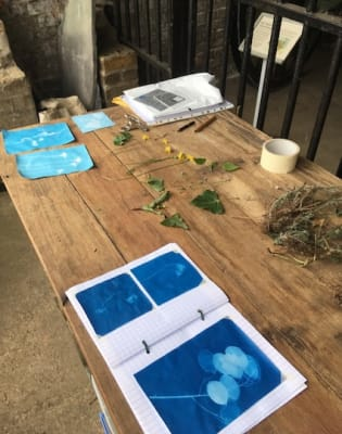 Introduction to Cyanotypes with Sally Gunnett by Studio 73 - photography in London