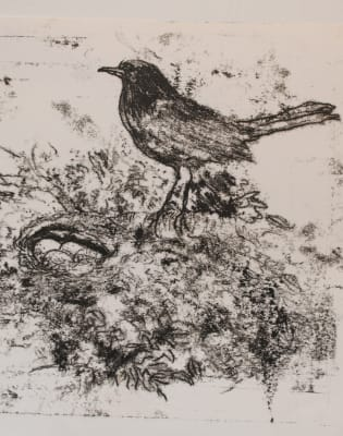 Introduction to Drawing 2: Taster Session by London Art School - art in London