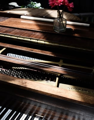Beginners Piano Lessons with Riyad Nicolas by Riyad Nicolas - music in London