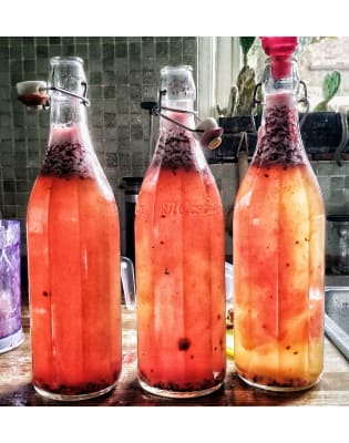 Kombucha & Kefir Making Class - Lacto Fermented Drinks by Cultcure - food in London