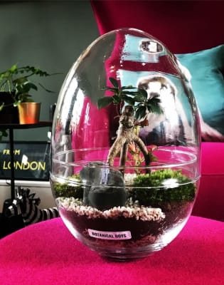 Large Glass Egg Terrarium Masterclass - Private Group in 19th Century Factory by Botanical Boys - crafts in London