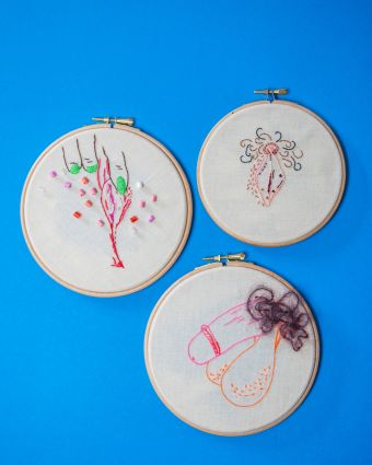 Membroidery - Embroidery with your genitalia at centre stage!