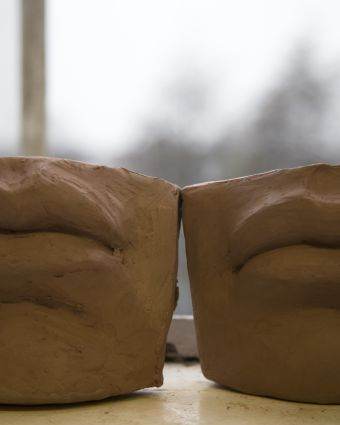 Sculpt David's Lips