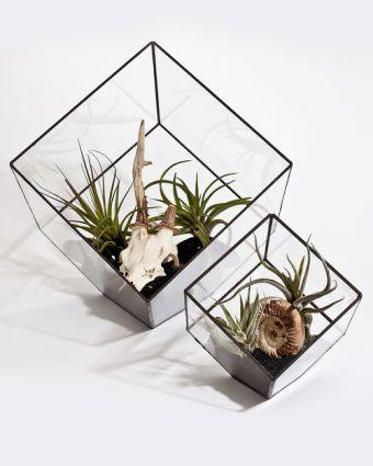 Private Class: Make Your Own Copper Foil Terrarium