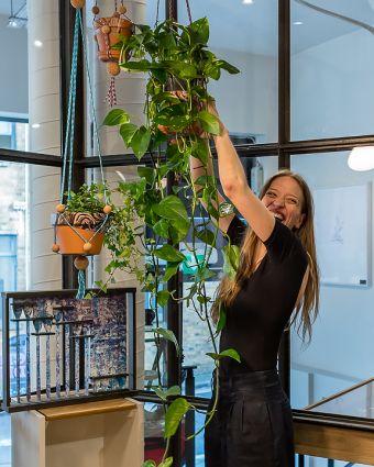 Make Your Own Adjustable Plant Hanger