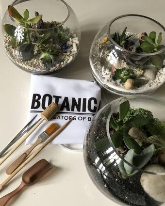 Succulent Terrarium and Prosecco - Botanicalboys