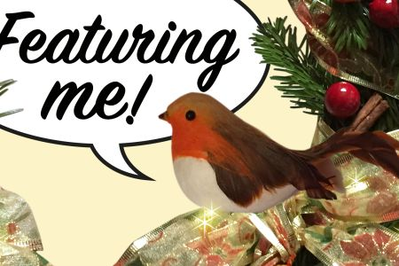There's a Robin in my Wreath! Christmas Workshop