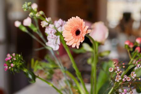 bloomon Flower Arranging Workshop: Hampstead
