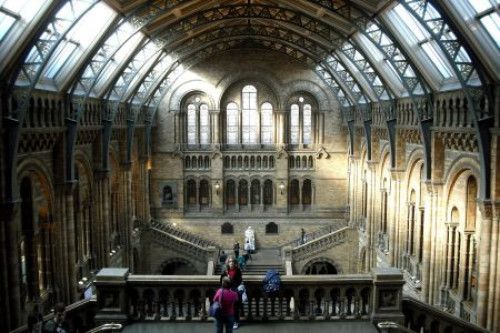 Explore the Natural History Museum for before incorporating its exhibits into new poems of your own in a 2-day course with McCullough.