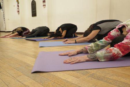 Hatha Yoga Class in Holland Park