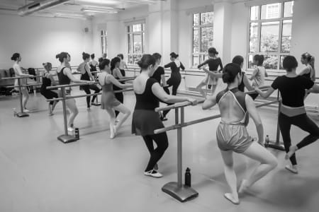 Ballet Technique and Flexibility Class - General Level, open to all!