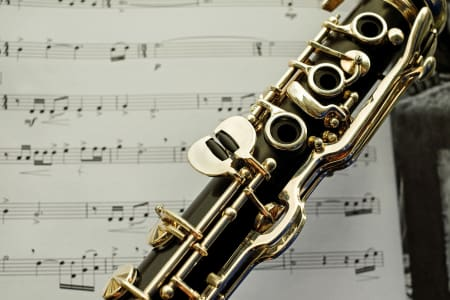 Clarinet Lessons for Any Level