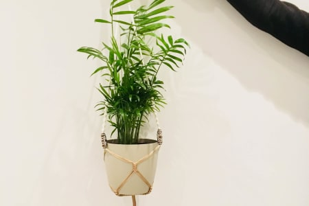 Make your own macramé plant hanger