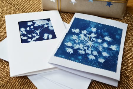 Cyanotype Christmas Cards