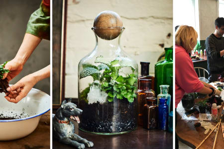 Tropical Terrarium Class with Tool Making - Group class