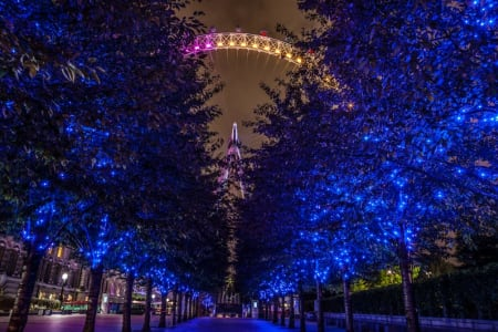 Private London Night Photography Tour - South Bank and Westminster