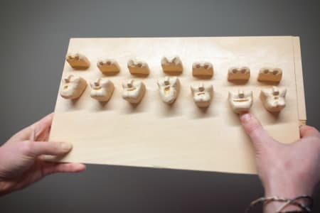 2 Day Stop Motion Animation, Face Replacement Workshop
