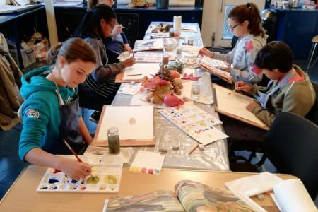 Young Artist's Course