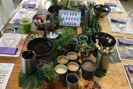 Terrarium Workshop with Glass Gardens London