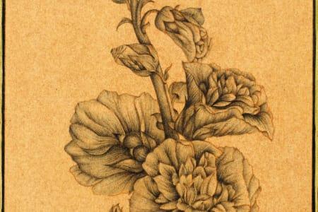 Botanical Indian Miniature Painting