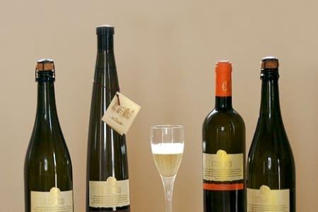 Wine Tasting with Cheese: Kensington