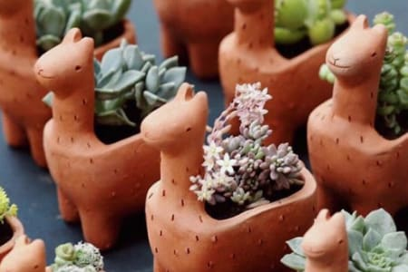 Handmade Pottery - Make Terracotta Planters (1 Part session)