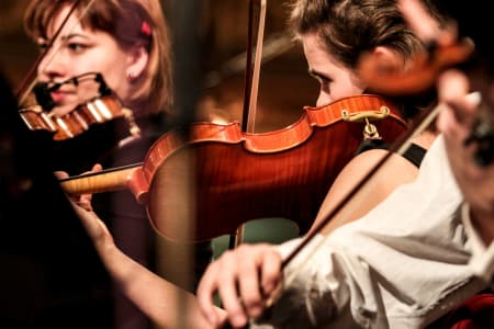 Advanced Violin Lessons with The Fulham Violinists