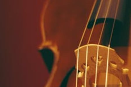 Beginners Violin Theory Lessons