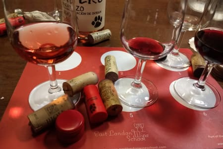 Introduction to Wine Tasting!