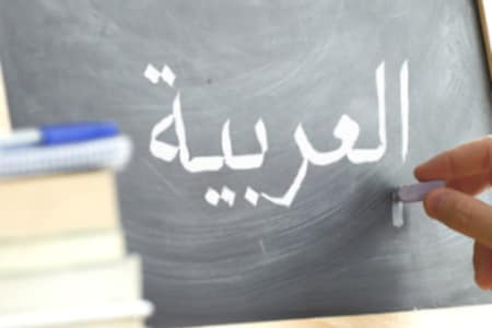 Modern Standard Arabic Tutoring