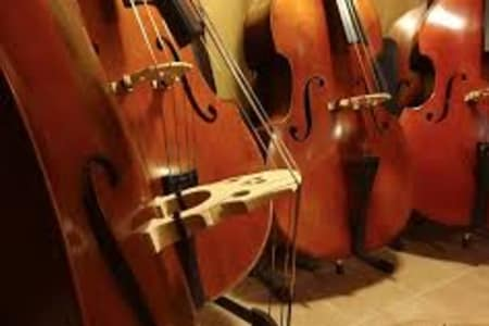 Double Bass Lessons for Any Level
