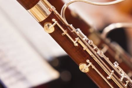 Bassoon Lessons for Any Level