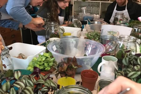 Terrarium Introduction Class - Upgrade Vessels Available