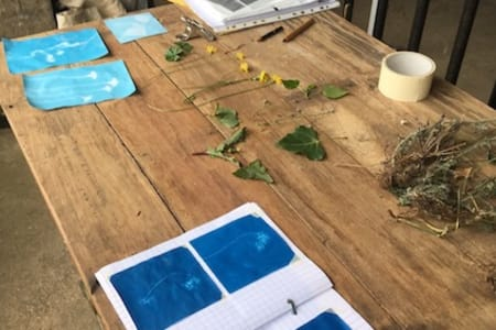 Introduction to Cyanotypes with Sally Gunnett