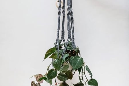 LEARN TO MAKE A MACRAME PLANT HANGER @OLD SPITALFIELDS MARKET WITH GREENROOMS MARKET